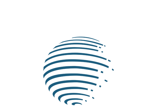 e-Money-Networks
